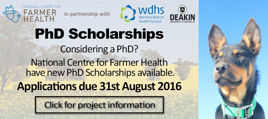 PhD-Scholarshipsdog